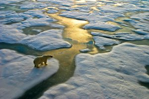 'Code red': United Nations scientists warn of worsening global warming