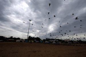 IMD forecasts winds, heavy rain in Chennai, parts of Tamil Nadu