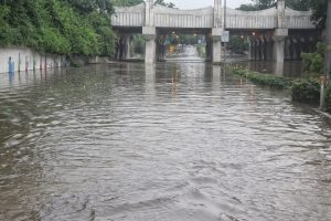 Heavy rains turn Delhi's roads, markets into flood zones