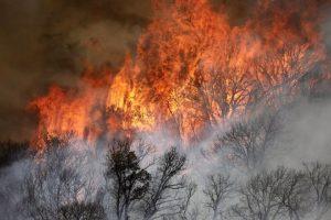 Over 1,600 firefighters battle new blaze in California