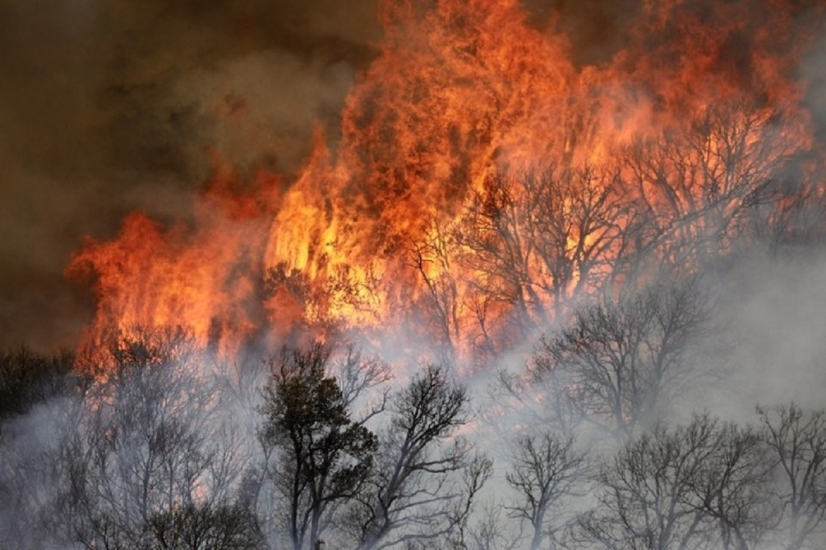 California, Wildfire