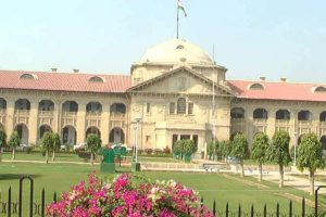 Allahabad HC asks govt to declare cow national animal