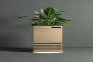 Indian Scientists develop world's first plant based air purifier