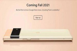 Google Pixel 6, Pixel 6 Pro camera details revealed ahead of launch