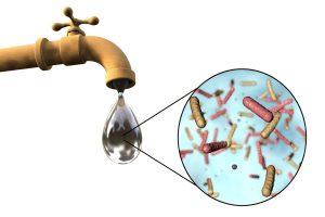 Kamarhati reports more than 56 new cholera cases