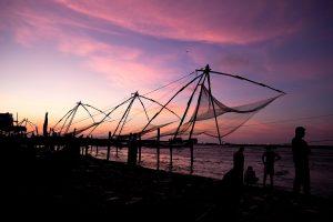 Fish farming to get 'boost' in Uttar Pradesh