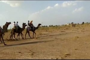 Rajasthan teams up with Incredible India to promote tourism