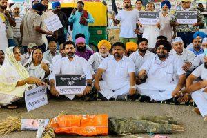Lakhimpur Kheri: AAP stages protests demanding Union minister's resignation, son's arrest