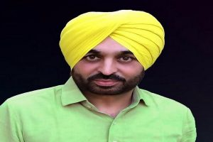 Punjab's youth losing jobs to candidates from other states due to lack of reservation: Mann