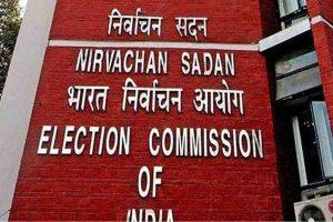 Trinamool celebrates despite EC's prohibitory order in Bengal