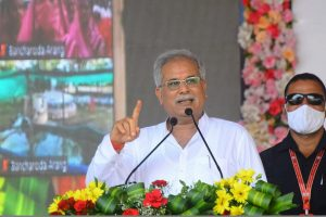 Chhattisgarh to generate electricity from cow dung after implementation of Godhan Nyay Yojana