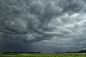 IMD issues yellow warning forecasting heavy to very heavy rain in several parts of Odisha