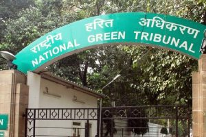 NGT empowered to take suo motu cognisance of environmental issues: SC