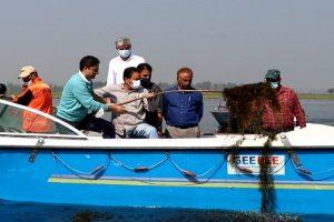 Srinagar Mayor cleans Dal Lake