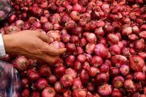 Govt undertakes targeted release of onions to keep prices in check